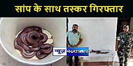 MOTIHARI NEWS : एसएसबी ने दोमुंहे सांप के साथ तस्कर को किया गिरफ्तार, वन विभाग के किया हवाले