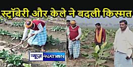पारंपरिक खेती को छोड़कर व्यावसायिक कृषि से अपनी किस्मत बदल रहे हैं कैमूर के किसान, बन रहे हैं उदाहरण