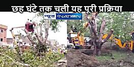 NATIONAL NEWS: पहले दीपक जलाकर क्षमा मांगी, फिर बीस फीट गहरी जड़ों के साथ पेड़ को उखाड़ा, पांच किलोमीटर दूर किया शिफ्ट
