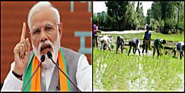 किसानों के लिए खुशखबरी, मोदी सरकार ने बढ़ाई धान समेत कई फसलों की MSP