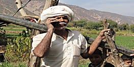 किसानों के लिए अच्छी खबर, देशभर में लागू होगी बिहार की बीज की होम डिलेवरी योजना