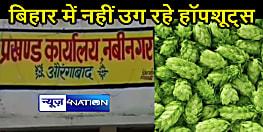 BIHAR NEWS: जिस हॉपशूट्स ने किसान को बनाया मशहूर, उसकी खेती बिहार में संभव ही नहीं