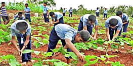 गुरु जी के सहयोग से पढ़ाई के साथ खेती भी करेंगे सरकारी स्कूल के बच्चे