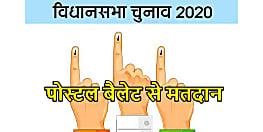 बिहार में बुजुर्ग और कोरोना मरीज विधान सभा चुनाव में पोस्टल बैलेट से करेंगे मतदान, तैयारी भी हो गई शुरू