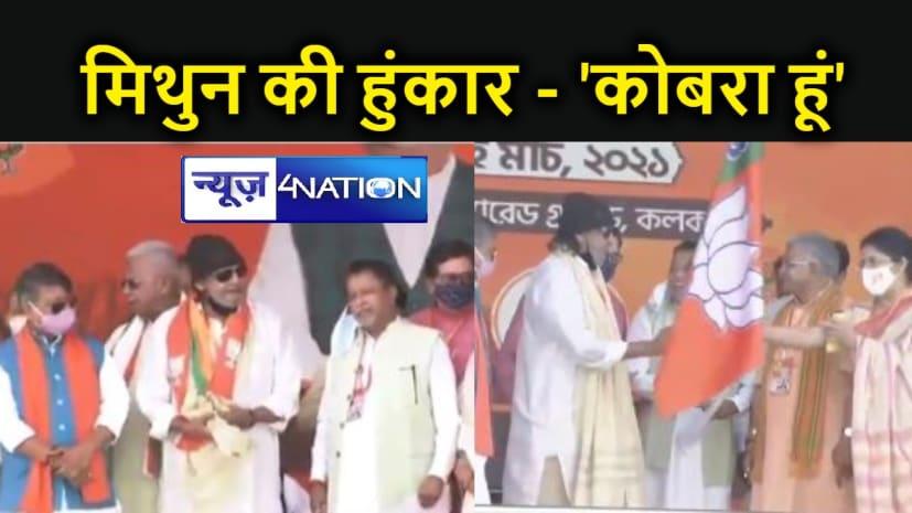 BJP में आते ही मिथुन की हुंकार, कहा- एक नंबर का कोबरा हूं, हक छीनेगा तो खड़ा हो जाऊंगा