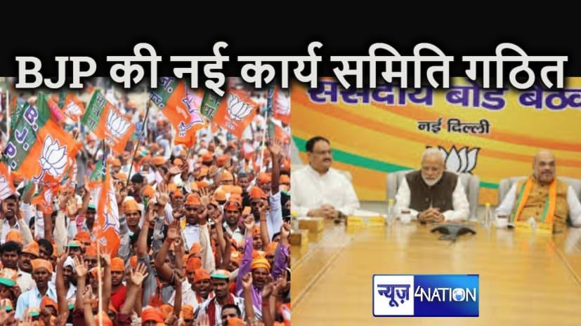भाजपा की नई कार्यसमिति का हुआ गठन, बिहार के इन नेताओं को मिली जगह, प्रभारी और सह - प्रभारी की भी हुई नियुक्ति