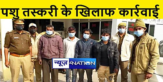 कुशीनगर : 20 गोवंश के साथ 4 तस्कर गिरफ्तार, हथियार बरामद