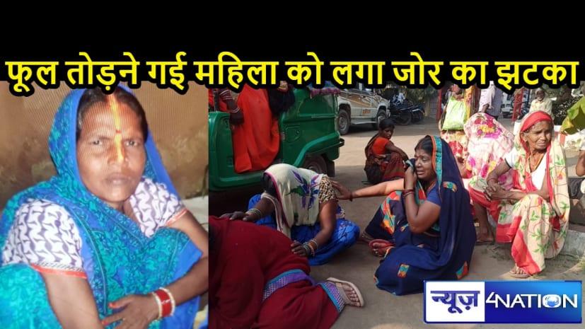 BIHAR NEWS: पूजा के फूल तोड़ने गई महिला को लगा करंट, 440 वोल्ट के तार के संपर्क में आने से मौके पर तोड़ा दम