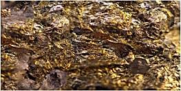 देश के इस राज्य में मिली सोने की खान, 8 साल पहले ही  भू वैज्ञानिकों ने सोना होने का किया था दावा