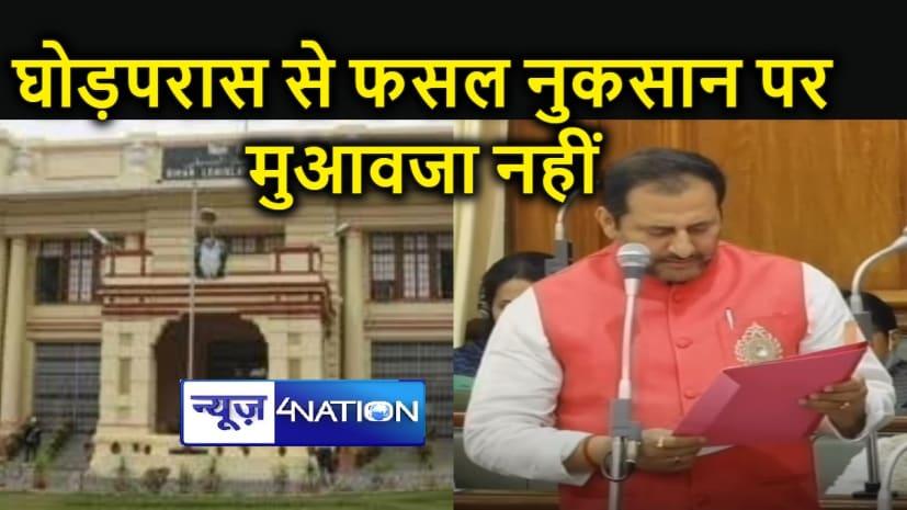 नीलगाय, नीलबकरी और घोड़परास के फेरा में सदन में फंस गए विधायक जी, मंत्री जी ने जवाब भी दिया कुछ ऐसा