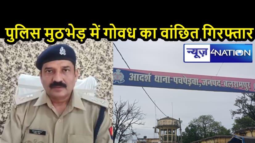 UP CRIME NEWS: पुलिस और अपराधी के बीच मुठभेड़, गोवंश के वांछित अपराधी को किया गिरफ्तार
