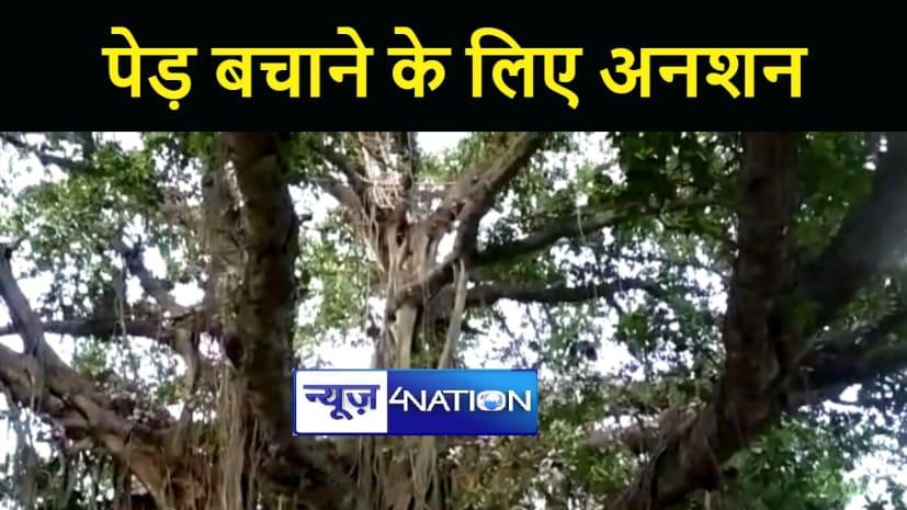 अनोखा अनशन : पेड़ काटने से नाराज शख्स ने पांडू वृक्ष पर मचान बनाकर छोड़ा अन्न जल, दोषियों पर की कार्रवाई की मांग