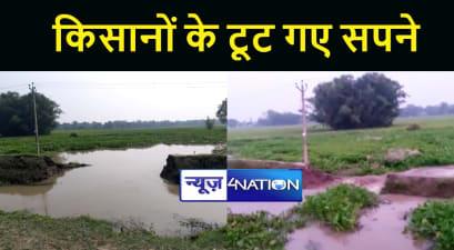 सुपौल में बरसात के बाद अब नहर ने बढ़ाई किसानों की मुसीबत, पानी में डूब गयी लाखों की फसल