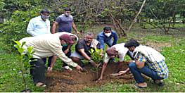 बीजेपी प्रदेश अध्यक्ष ने अपने आवास से तीन दिवसीय वृक्षरोपण कार्यक्रम का किया शुभारंभ, कहा- प्रकृति और संस्कृति है हमारी विरासत