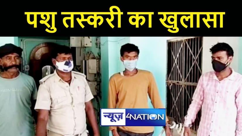 BIHAR NEWS : कैमूर में पुलिस की कार्रवाई, 20 पशुओं के साथ दो तस्करों को किया गिरफ्तार