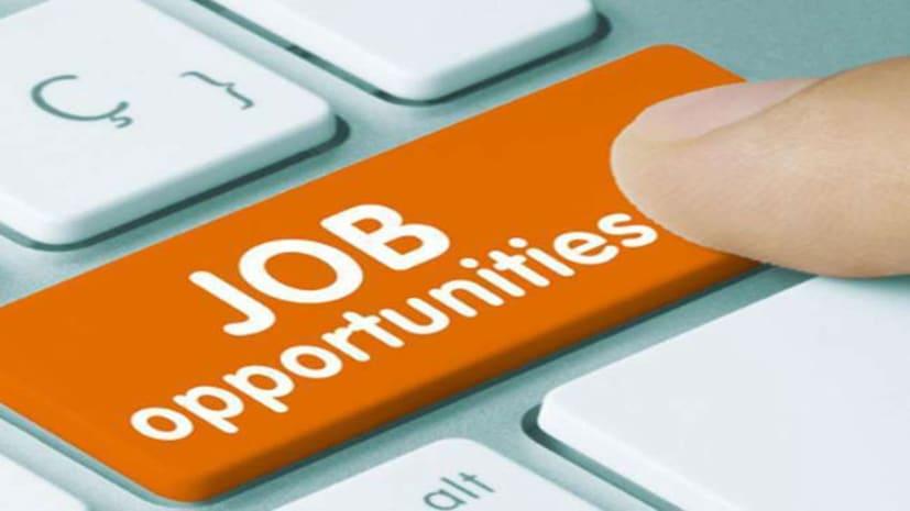 नौकरी की तलाश में जुटे युवक-युवतियों के लिए खुशखबरी,  बिहार सरकार इस विभाग में नए पदों के लिए  निकली बंपर वेकैंसी