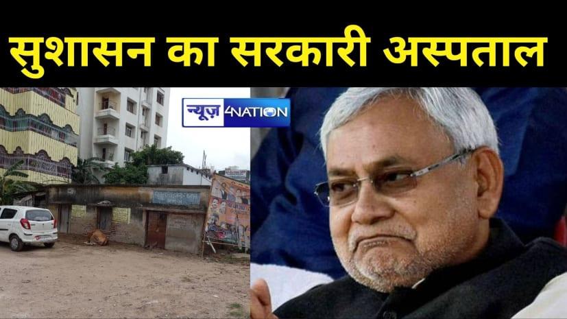 पटना का सरकारी अस्पताल बना तबेला:  डिप्टी CM के मोहल्ले के सरकारी हॉस्पिटल में बंधती है 'गाय', है न सुशासन ?