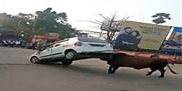 कार पर उतरा शेर-ए-हाजीपुर का गुस्सा,हॉर्न क्या बजाया कि कार को हीं उठा लिया.....