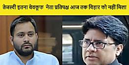 बिहार बीजेपी ने तेजस्वी यादव को बताया बेवकूफ,सुशील मोदी से खाता-बही का ज्ञान लेने की सलाह