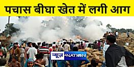 भागलपुर : पचास बीघा खेत में लगी भीषण आग, लाखों की फसल जलकर राख