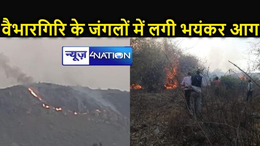 राजगीर के वैभारगिरि पर जंगल में लगी आग, लाखों की लकड़ी व जड़ी-बूटी जलकर राख