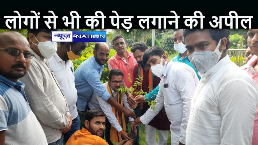 BIHAR NEWS: सांसद ने लगाये दर्जनों पेड़, लोगों से भी पेड़ लगाने की अपील की, बोले आया जनअभियान बनाने का वक्त