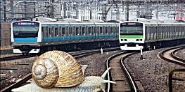 गजब : एक घोंघे ने लगा दिया 26 ट्रेनों की रफ़्तार पर ब्रेक,परिचालन में हुई देरी , हजारों लोग हुए प्रभावित