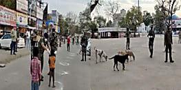 CRPF को सलाम : संकट की इस घड़ी में इंसान तो इंसान जानवरों की ऐसे सेवा में जुटे है सीआरपीएफ जवान