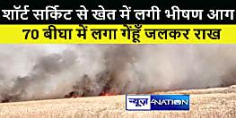 औरंगाबाद : शॉर्ट सर्किट से खेत में लगी भीषण आग, 70 बीघा में लगा गेंहूँ जलकर राख