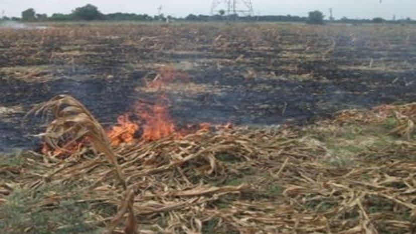 बांका से लौटते समय सीएम ने खुद खेतों में पुआल जलते देख फौरन मुख्य सचिव को दिए निर्देश, कहा- हवाई सर्वेक्षण कर रखें नजर