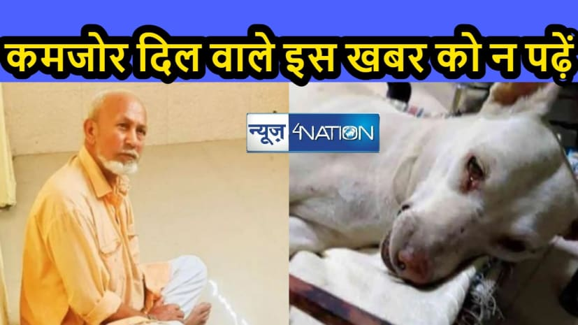 40 कुत्तियों के साथ दुष्कर्म कर चुका है अहमद शाह, कहा जानवरों को आपत्ति नहीं है तो फिर......