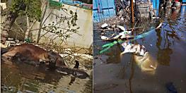 पांडे जी, देख लीजिये इन तस्वीरों को, जलजमाव से भी बड़ी त्रासदी पटना को शिकार बनाने को आतुर है