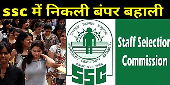 कर्मचारी चयन आयोग 1355 पदों पर नियुक्ति के लिये मांगे आवेदन,ऐसे करें अप्लाई