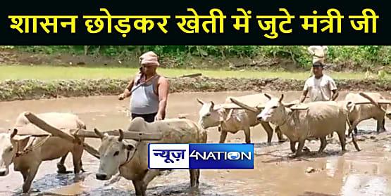 JHARKHAND NEWS : सरकार की चिंता छोड़ खेती में जुटे