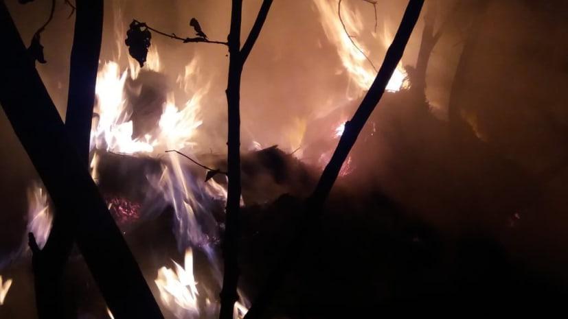 असामाजित तत्वों ने खलिहान में लगाई आग, फसल जलकर खाक