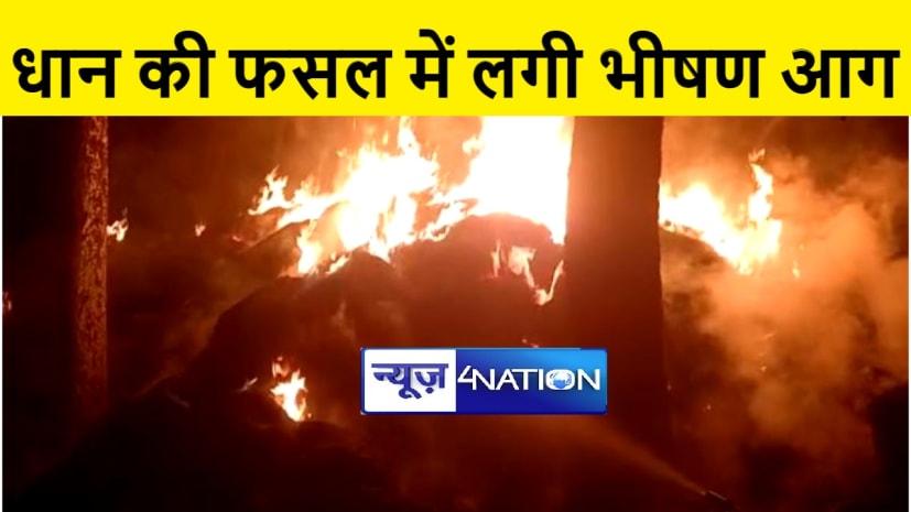 गया : आसामाजिक तत्वों ने खलिहान में लगायी आग, तीन लाख रूपये की फसल जलकर राख
