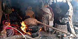 लॉकडाउन में महुआ से बना दिया सैनिटाइजर, महिलाओं ने यूट्यूब से लिया था ज्ञान