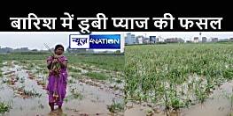 BIHAR NEWS : लगातार बारिश से खेत में सड़ने लगा प्याज की फसल, किसानों को हुआ लाखों का नुकसान