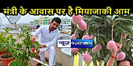 BIHAR NEWS: 'आम' ने मंत्री महोदय को बनाया और भी खास, कृषि वैज्ञानिकों से जानकारी लेकर पैदावार बढ़ाने की करेंगे कोशिश