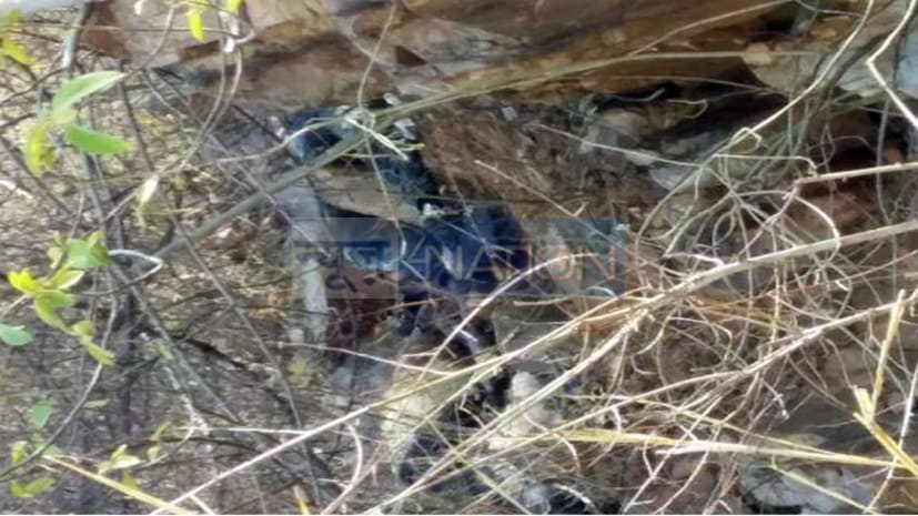 नवादा : अगवा तीनों युवकों की जंगल में मिली क्षत-विक्षत लाश, इलाके में  सनसनी