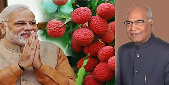 CM नीतीश ने बिहार की शाही लीची PM मोदी और राष्ट्रपति रामनाथ कोविंद के लिए भेजी