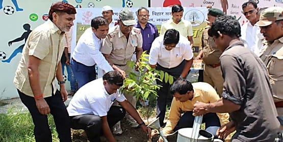 नवादा में वन महोत्सव का हुआ आयोजन, अधिकारियों ने की पौधरोपण की अपील