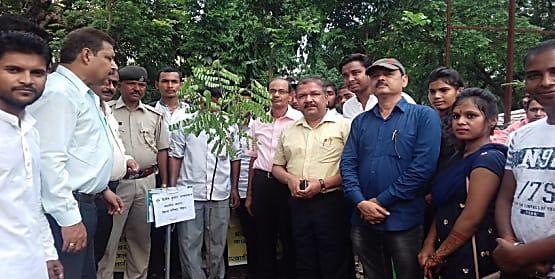 वन महोत्सव के मौके पर विधान पार्षद ने किया पौधारोपण, देखभाल का दिया निर्देश