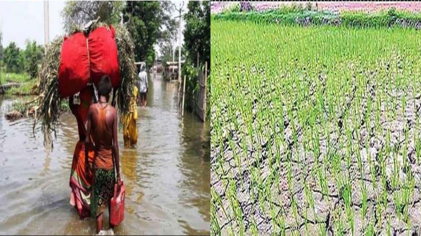 बेबस बिहार: 13 जिलों में बाढ़ तो 22 में सुखाड़, हालात का जायजा लेंगे मंत्री,सौपेंगे रिपोर्ट