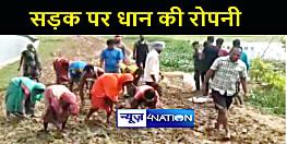 BIHAR NEWS : आज़ादी के 74 साल बाद भी गाँव में नहीं बनी पक्की सड़क, गुस्साए ग्रामीणों ने कच्ची सड़क पर की धान की खेती