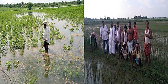 बिहार में बाढ़ का कहर : 13 जिले के किसान पूरी तरह बर्बाद, जन और धन दोनो की क्षति