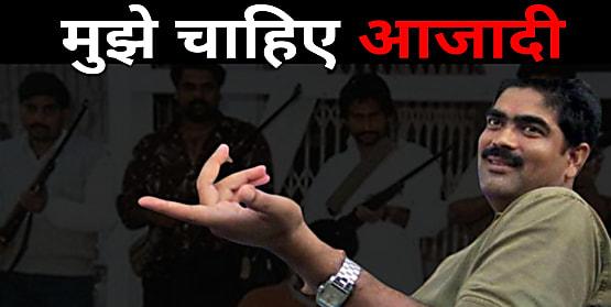 बाहुबली पूर्व सांसद शहाबुद्दीन ने मांगी 'आजादी', सुप्रीम कोर्ट से कहा घूमना चाहता हूं..