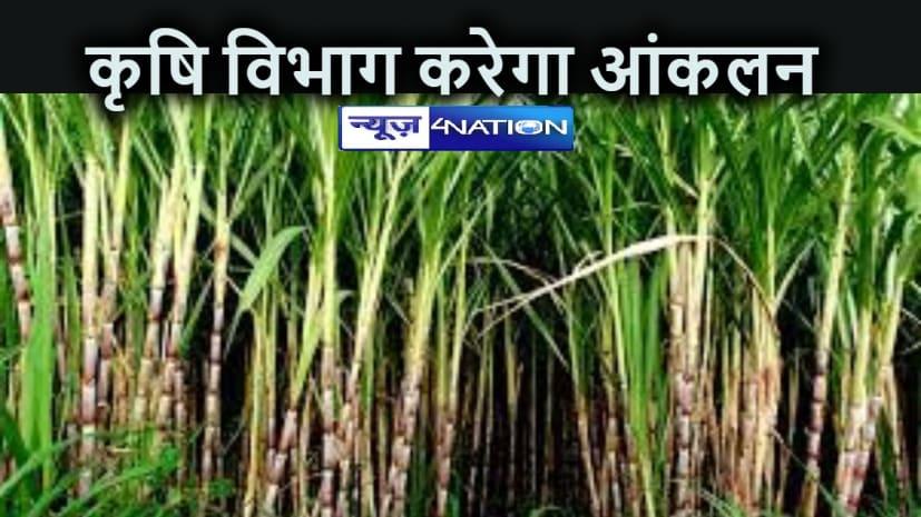 BIHAR NEWS: अन्य फसलों के साथ-साथ गन्ना फसल का भी क्षति आंकलित करेगा कृषि विभाग