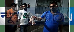पटना के एक अस्पताल में डॉक्टर की एक गलती और सर्जरी के 2 महीने बाद तक महिला के पेट में पड़ा रहा तौलिया