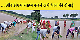 बिहार के एक DM साहब अचानक पानी भरे खेत मे उतर गए और करने लगे धान की रोपनी,फिर......
